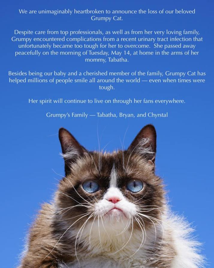 The Official Grumpy Cat-Facebook